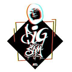 BiGSaM Official