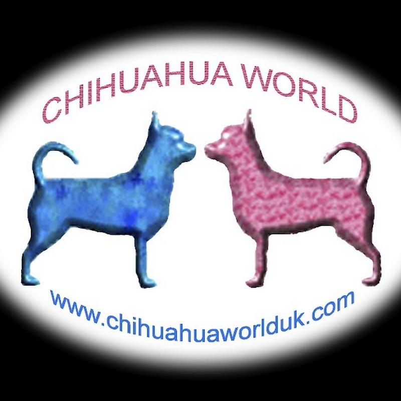 chihuahuaworlduk