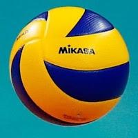 Volleyball Online #2