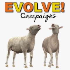 EVOLVE Campaigns
