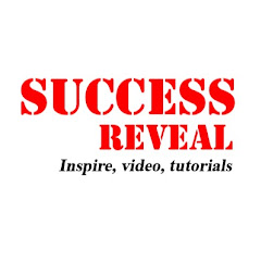 Success Reveal