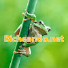 Bicheando_net