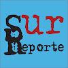 Diario Reporte Sur