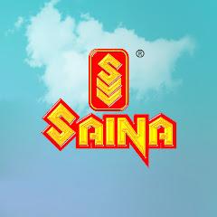 SainaVideoVision