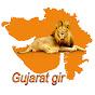 Gujarat gir