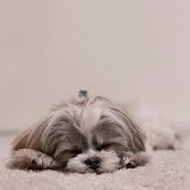 Bedroom Furniture | Sleep Well!