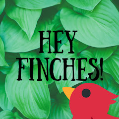 Hey Finches!