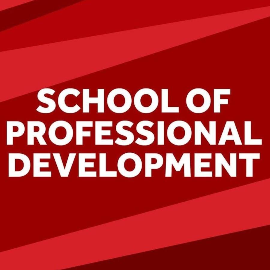 Scuola Di Pietre Piene Di Sviluppo Professionale