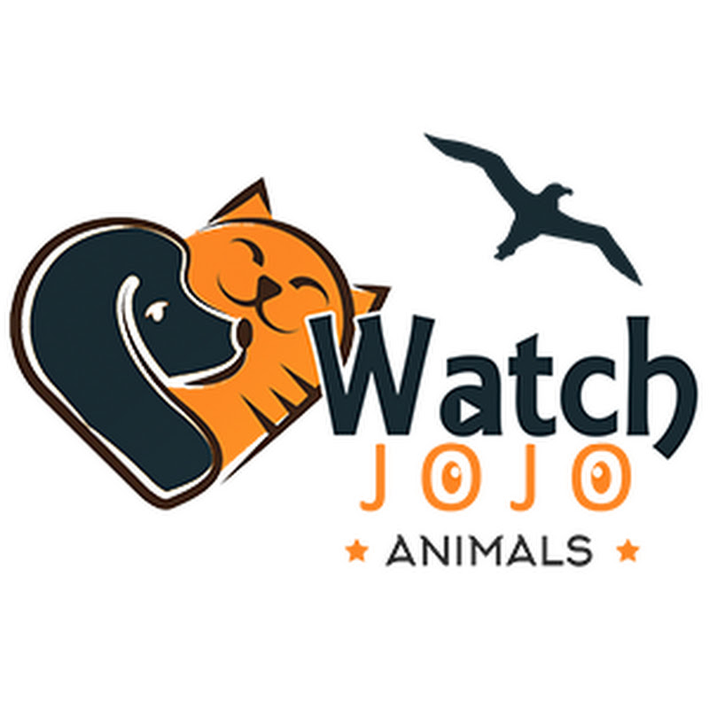 Watchjojo Animals