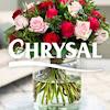 Chrysal Flower & Plant Care