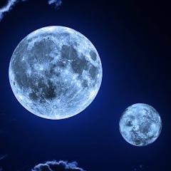 Moonlight - Music Video