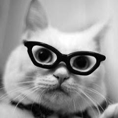 Cat BGM