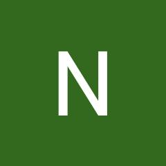 Nisha Meena