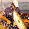FishermansBellyChannel