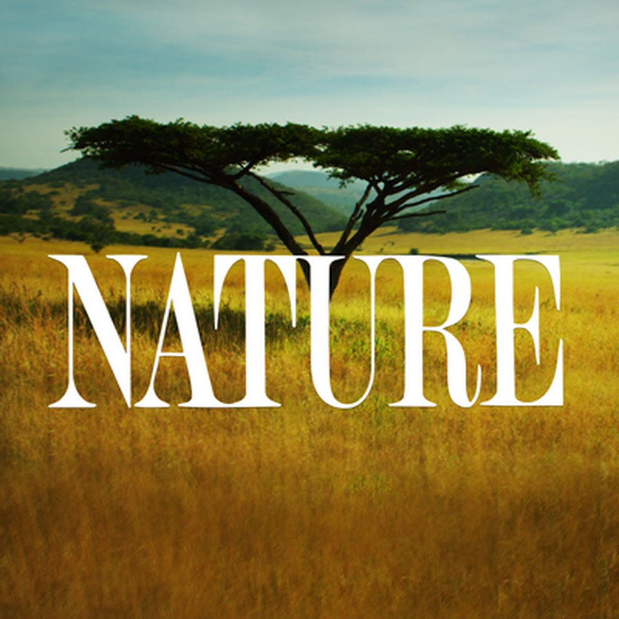 nature on pbs youtube