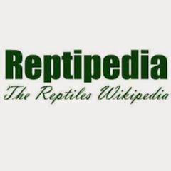 Reptipedia