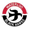 waterlooblackhawks