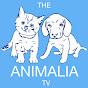 The Animalia Tv (the-animalia-tv)