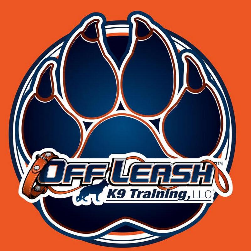 Off Leash K9 Training Central Florida