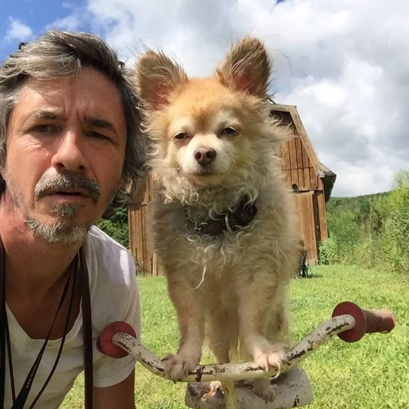 Peter Caine Dog Training