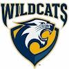 Wiley Wildcat