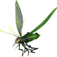 firefly1521