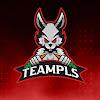 TeamPls