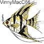Vinny MacC