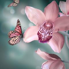 Custo Da Publicidade E вязание от светланы заец Phalaenopsis