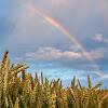 Rainbow Light Trust