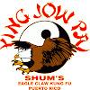 Shaolin Kung Fu Wushu Institute, Puerto Rico