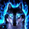 Tagir_Wolf