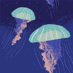 Chase Hansen