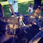 GTA Working Dogs