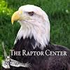 The Raptor Center