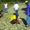agriculturehaiti