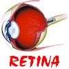 RetinaBd