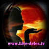 www.Live-Avles.tv