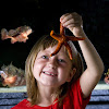 Gulf Specimen Aquarium