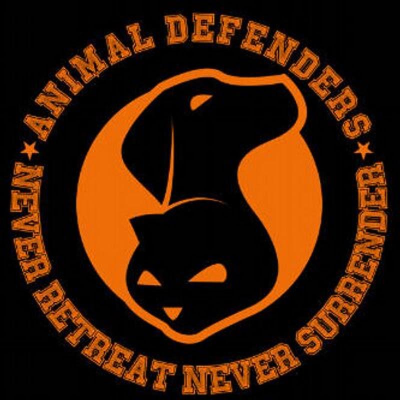 Animal Defenders Indonesia