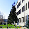 The II. gimnazija Maribor