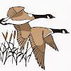 Flyways Waterfowl Experience, Laser Arcade & Nature Gifts