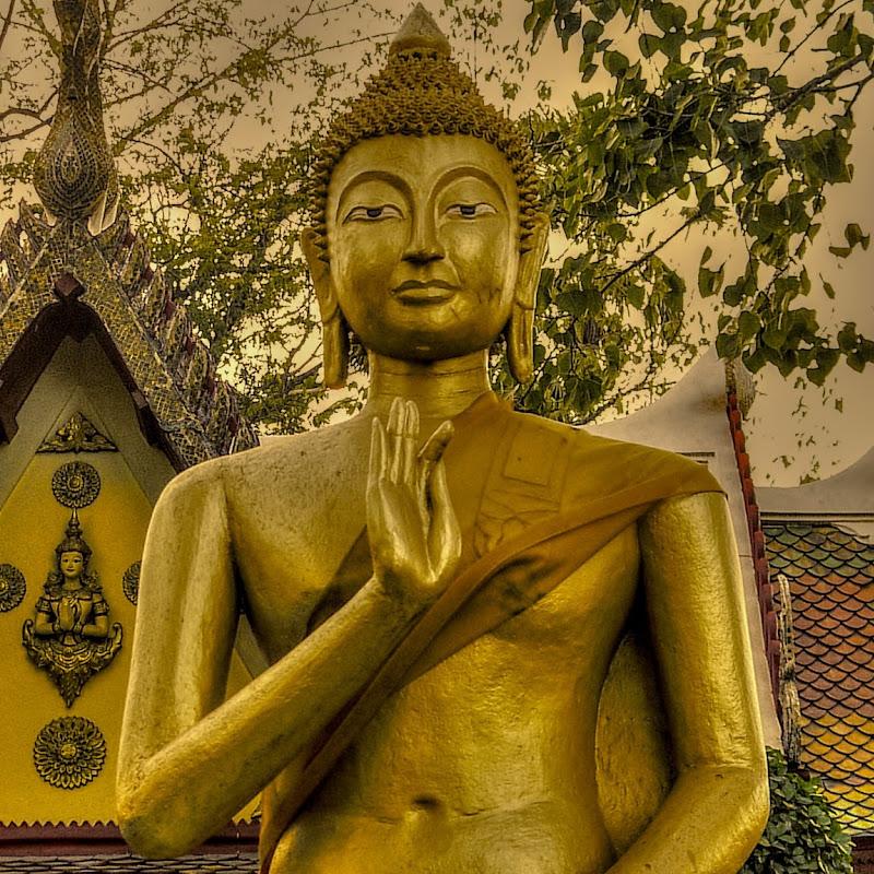 D4nie1TV Thailand