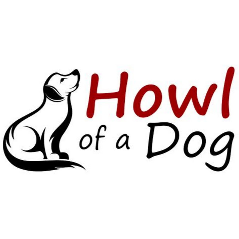 Howl Of A Dog