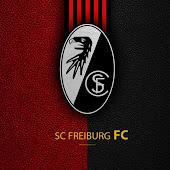 SC Freiburg/Fans