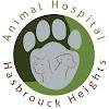 Animal Hospital of Hasbrouck Heights