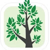 Branches Inc