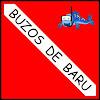 BUZOS DE BARU