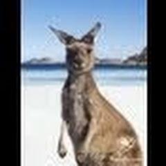 australiahk