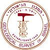 המכון הגיאולוגי לישראל